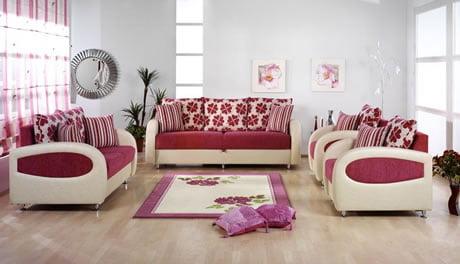 Pembe Renk Oturma Odası (4)