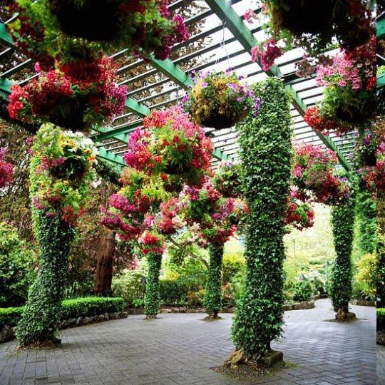 Çağdaş Bahçe Fikirleri (11)