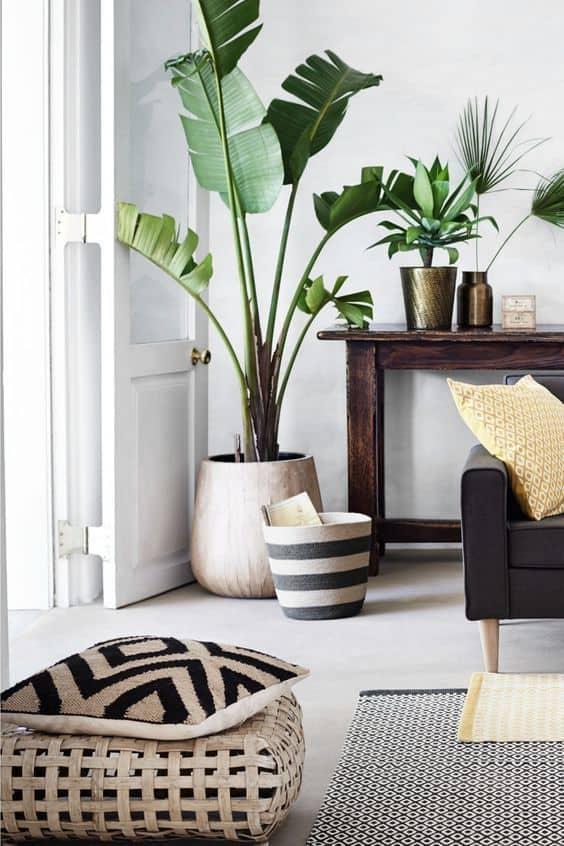 Farklı boyutlardaki bitkileri birleştirin