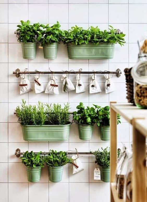 Mutfağınıza küçük bir baharat bahçesi dikin