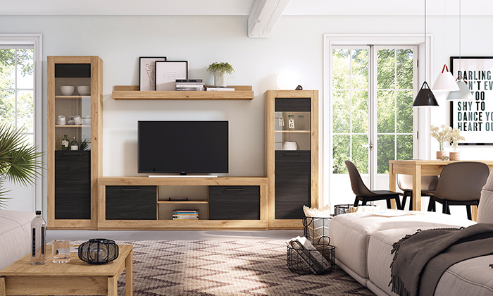 Modern Endüstriyel Rustik Oturma Odası Mobilya Takımı