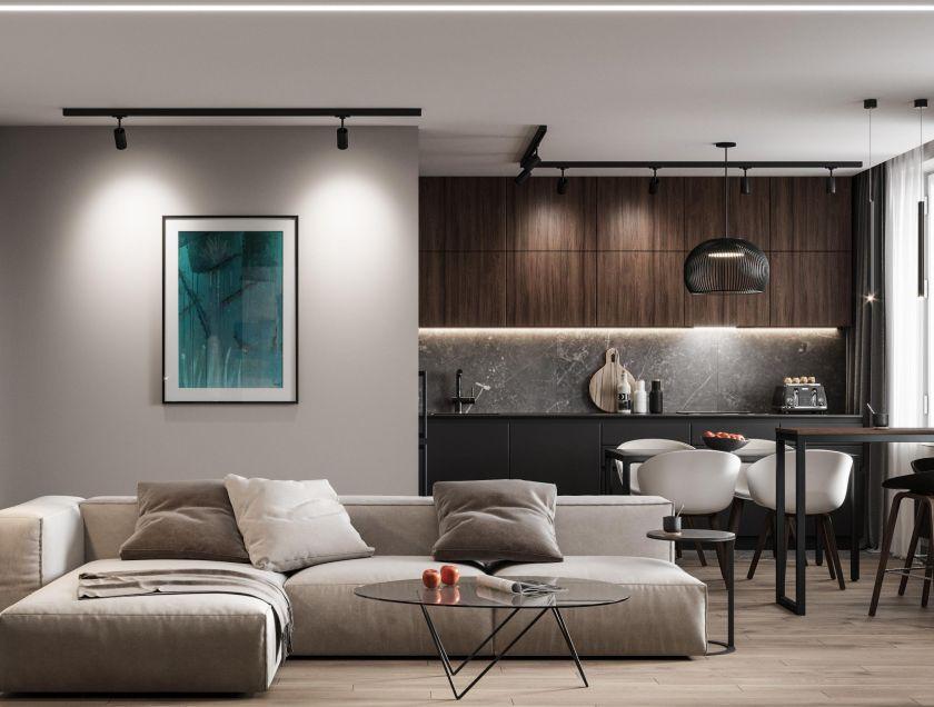 Modern bir oturma odasında ne tür bir aydınlatma seçilmeli: tavan ve dekoratif aydınlatma örnekleri (70+ fotoğraf)
