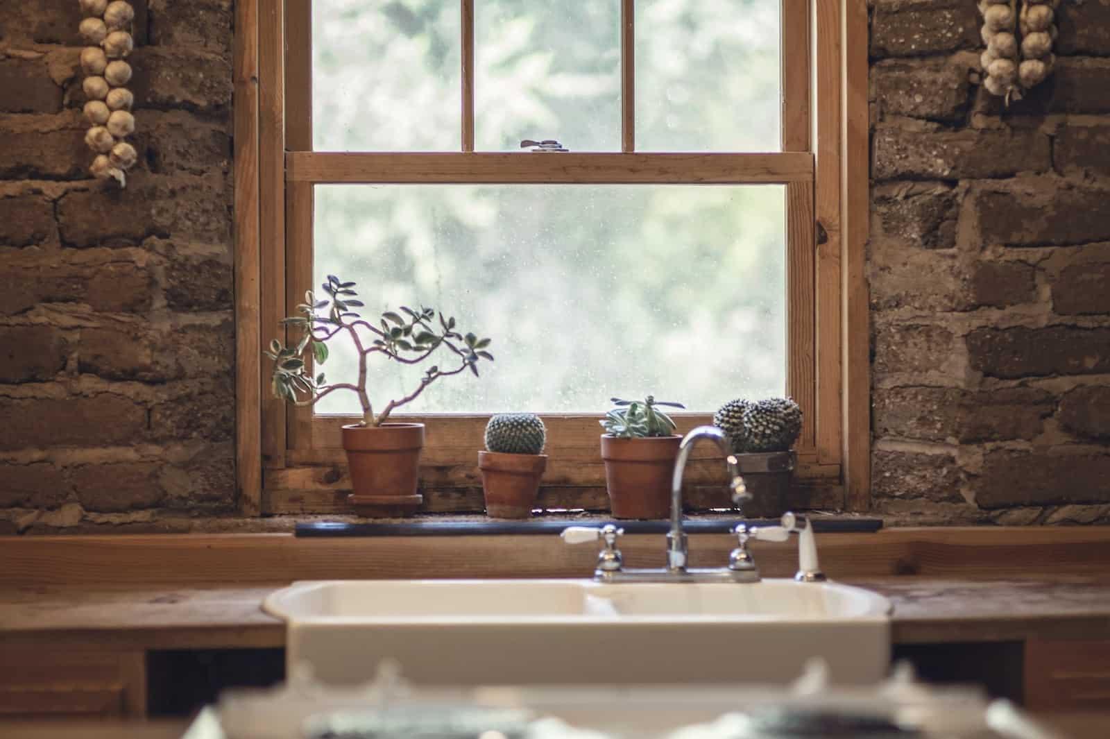 Pencere pervazı da bitkiler için iyi bir yerdir.
