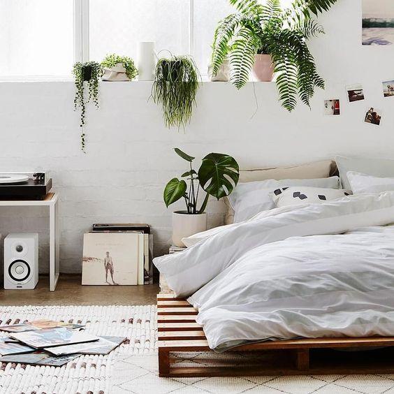 Odadaki bitkiler: odadaki bitkilerle uyuyun