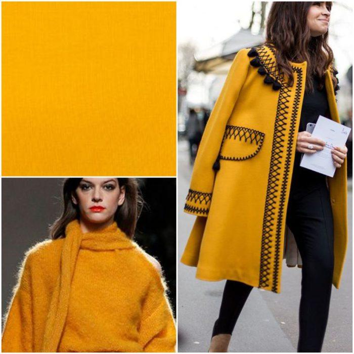 Hemerocalis Trendy renkler kış 2022