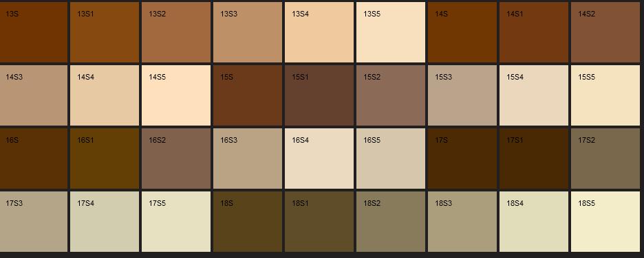 Dış Cephe Boya Rengi Seçimi Örnekleri